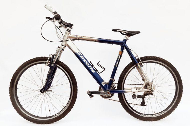 Gazelle extreme aluminium - blauw